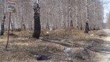 Несанкционированная свалка мусора в п.Шабровский,Чкаловский район г.Екатеринбурга
