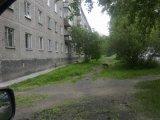 Бродячие собаки по ул. Металлургов в Екатеринбурге #public66