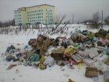 О ненадлежащем содержании контейнерной площадки на территории Лихославльского р-на, г. Лихославль