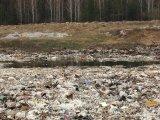 В прокуратуру по свалке мусора на окраине Уралмаша, ул.Коммунистическая